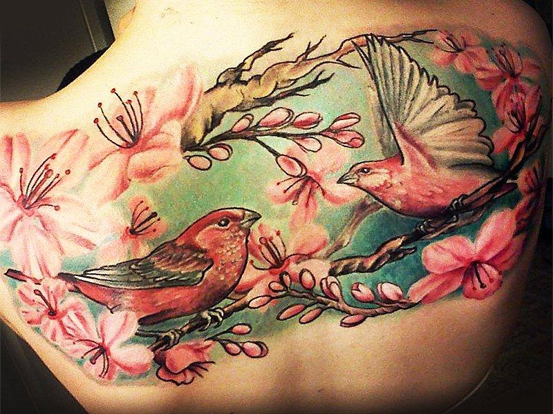 Птички на спине