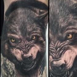 волчий оскал тату фото