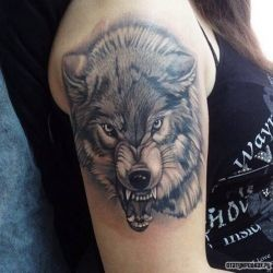 Татуировки на плече для мужчин фото с волком
