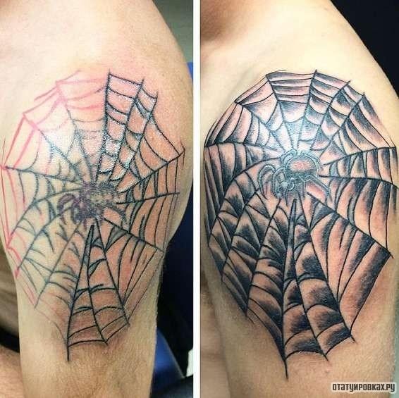 Значение татуировок: Паук Татуировка