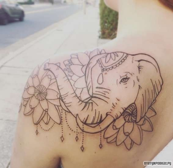 Elephant Tattoo Amazoncom