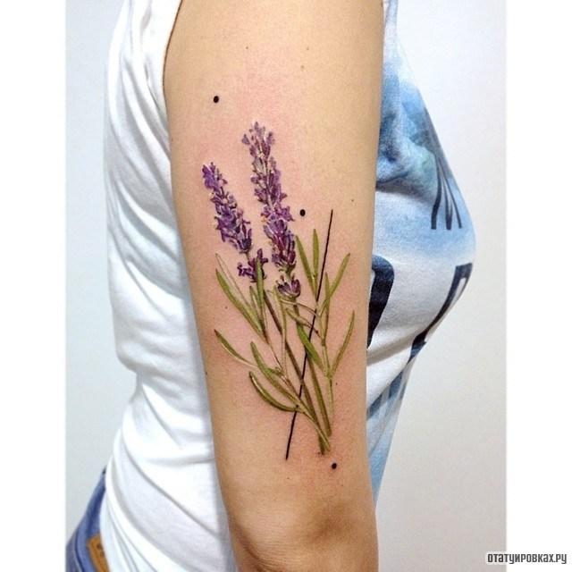 Полевые цветы тату