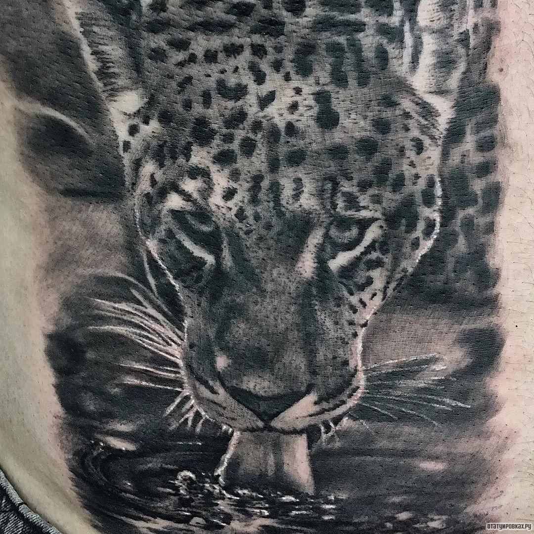 Тату оскал леопарда