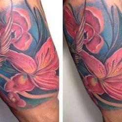 Флора и фауна: татуировки природы, их значения, фото и отзывы