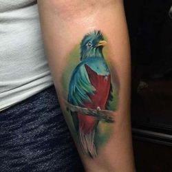 Татуировки птицы: самые женственные татуировки, их значения, фото и отзывы