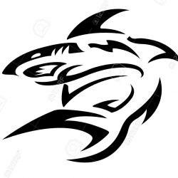 Спортивная акула - эскиз