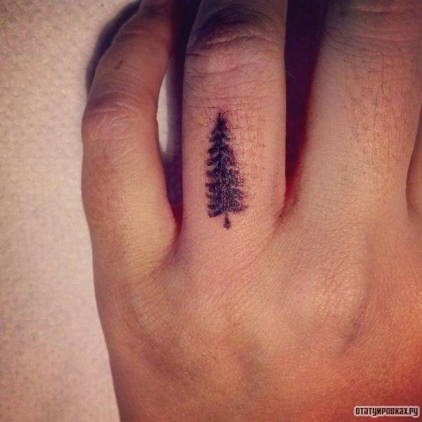 Татуировка ель