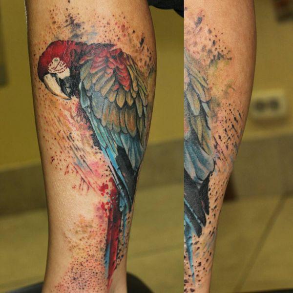 Большой попугай на ноге парня в цвете
