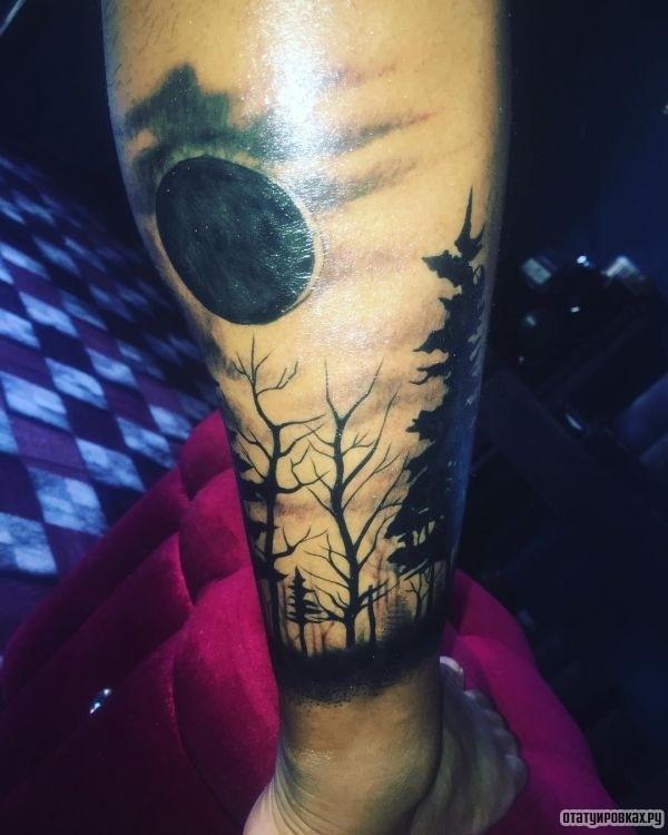 Татуировка сосна
