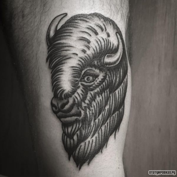 Татуировка буйвол