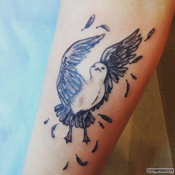 Татуировка чайка