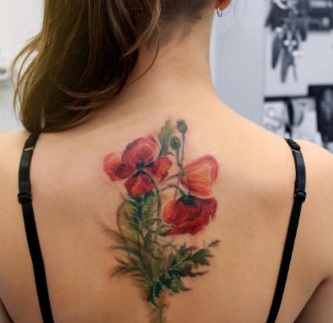 Красный мак в виде тату на спине девушки
