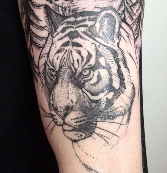 Тигр в черно-белом варианте