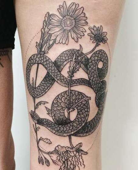 Змея завивается вокруг цветка