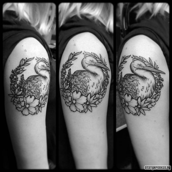 Татуировка аист