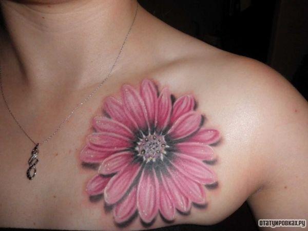 Татуировка гербера