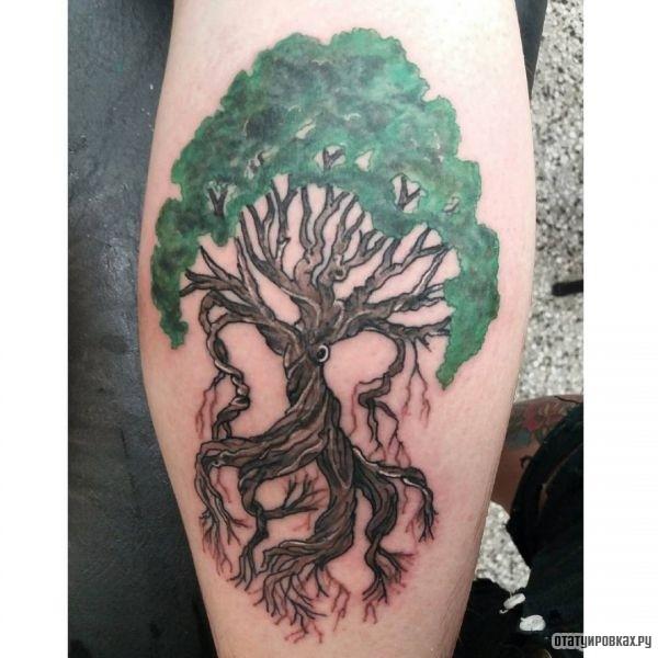 Татуировка иггдрасиль
