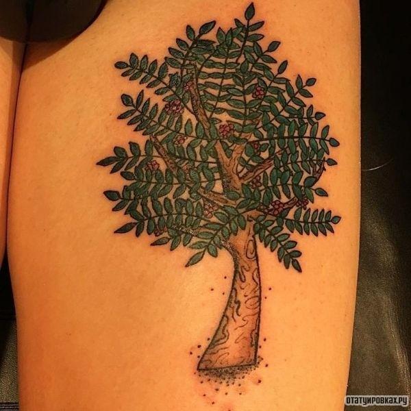 Татуировка рябина