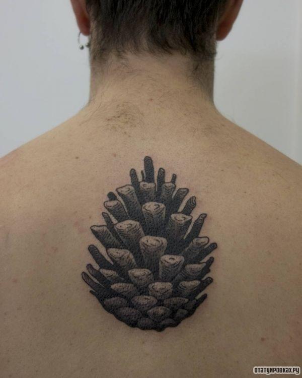 Татуировка шишка