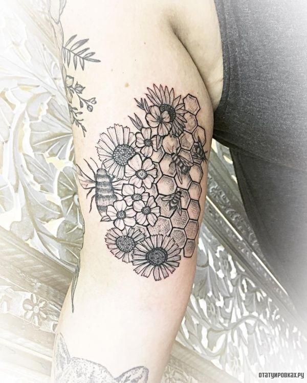 Татуировка соты