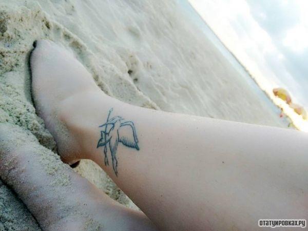 Cойка-пересмешница в виде тату на щиколотке девушки