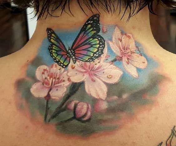Бабочка на цветах, природа