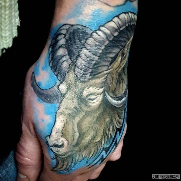 Татуировка баран