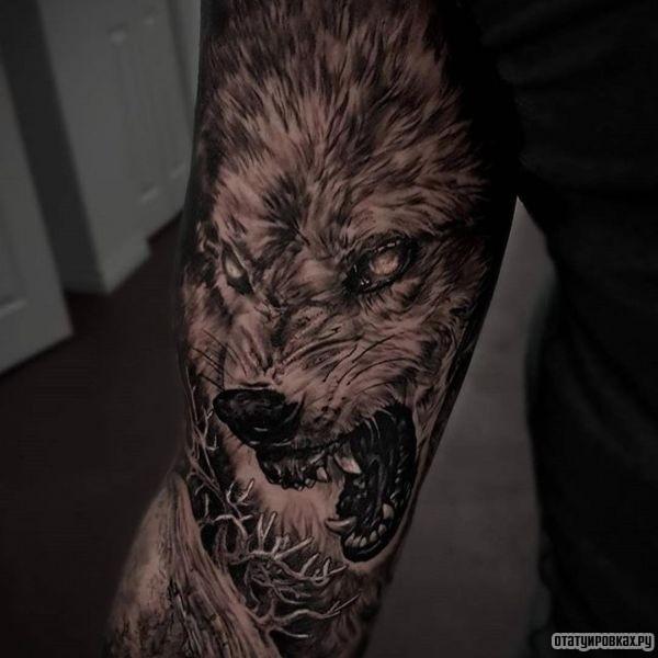 Татуировка фенрир