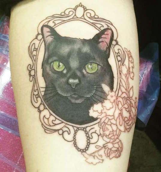 Черная кошка в зеркале