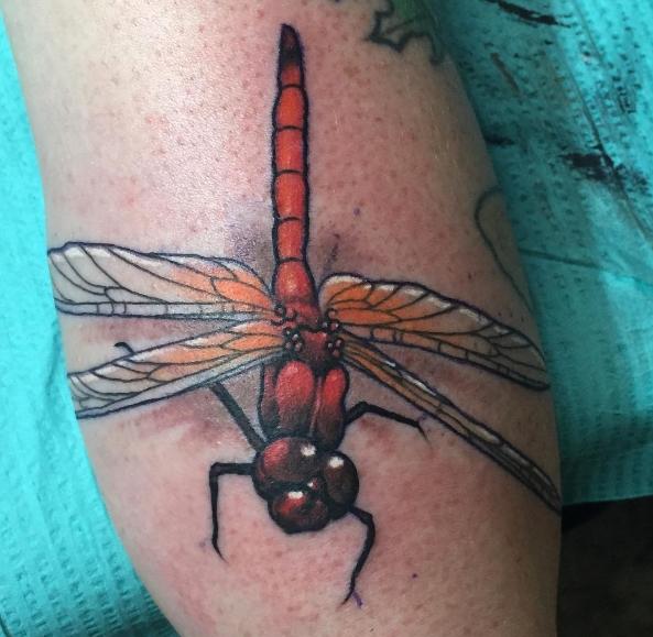 Цветная татуировка стрекозы