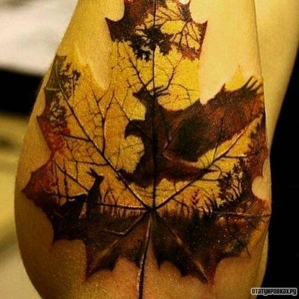 Татуировка клен