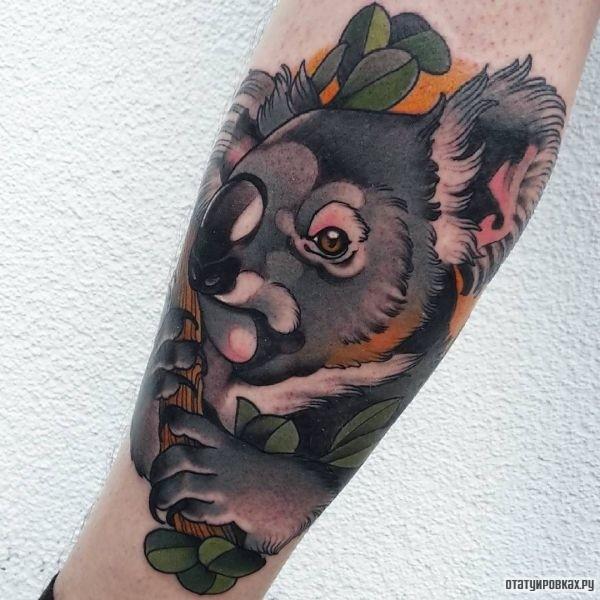 Татуировка коала