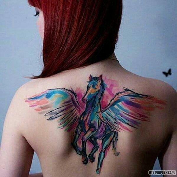 Татуировка пегас