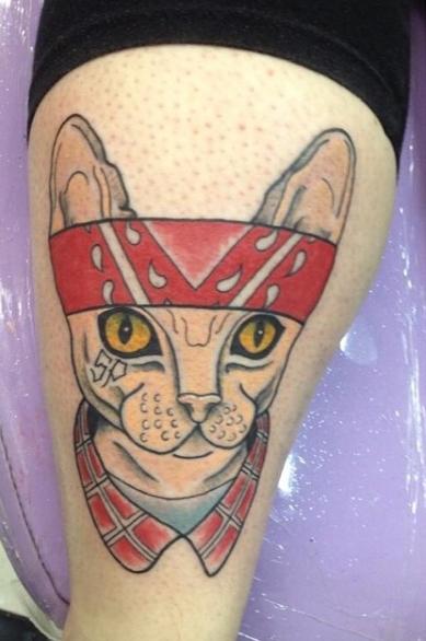 Кот сфинкс с повязкой на голове - татуировка