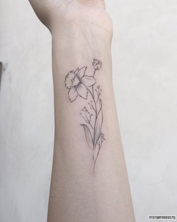 Татуировка нарцисс