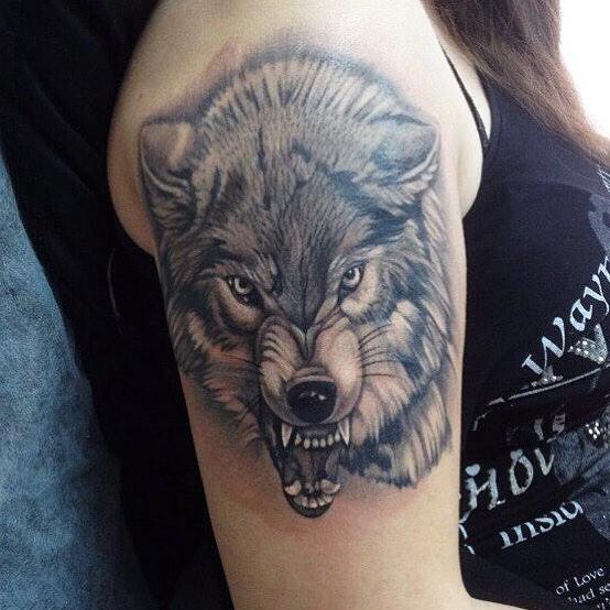Оскал волка в чб варианте