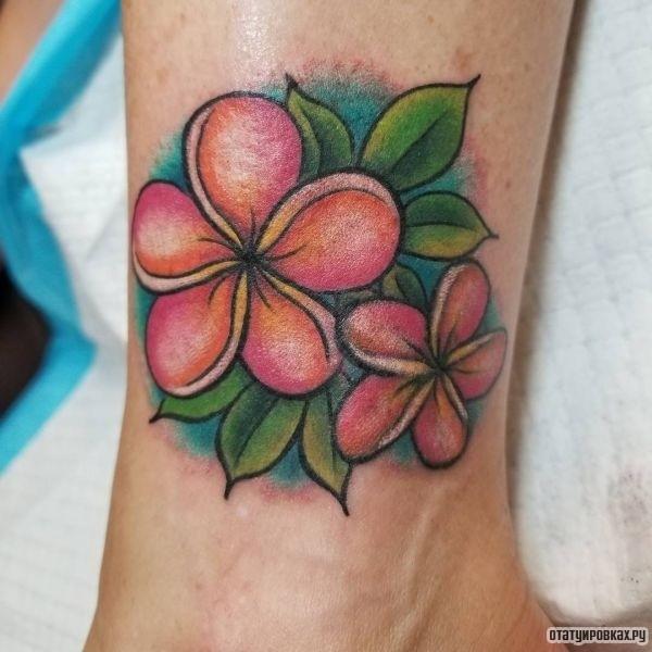 Татуировка плюмерия