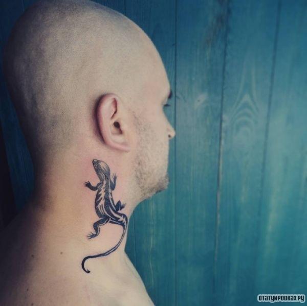 Татуировка саламандра