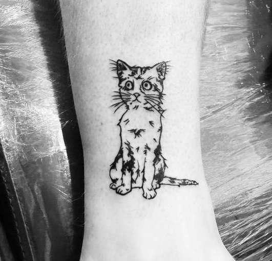 Ободранная кошка на ноге девушки