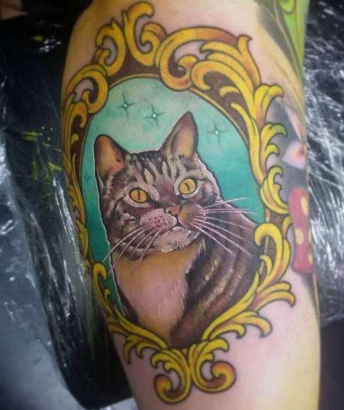 Кот в зеркале