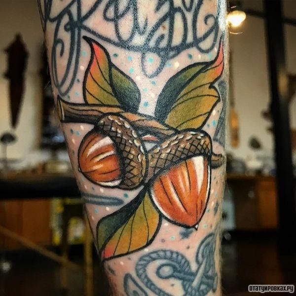 Татуировка желудь