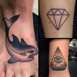 акула фотография