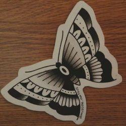 бабочка фото, эскиз