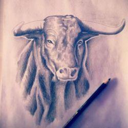 Татуировка бык фото, эскиз