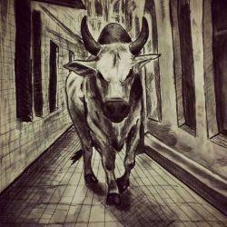 татуировка бык эскиз