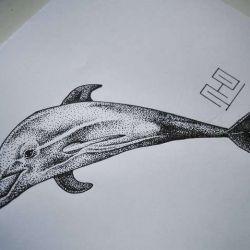 Татуировка дельфин фото, эскиз