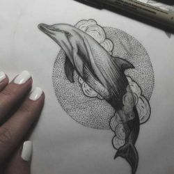 дельфин фото, эскиз