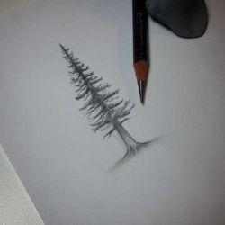 фото, эскиз дерево