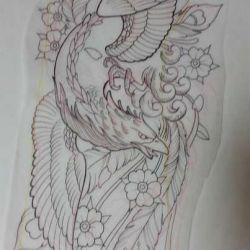 фото, эскиз татуировка феникс