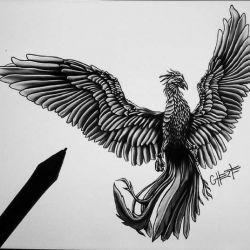 эскиз тату феникс